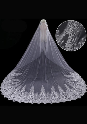 Cathedral Length Veil style 8