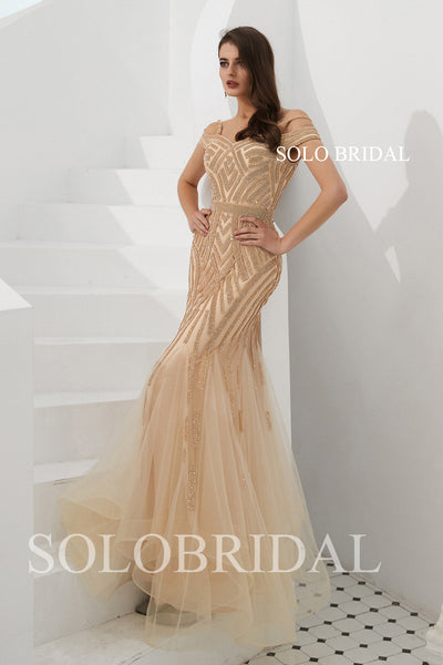 Champagne Fit and Flare Tulle Shiny Prom Dress