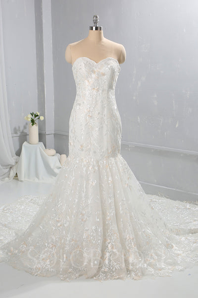 Ivory with Champagne Lace Wedding Dress with Cathedral Train