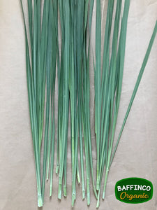 Buy Fresh Organic Lemon Grass