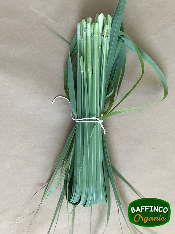 Fresh Organic Lemon Grass for Sale