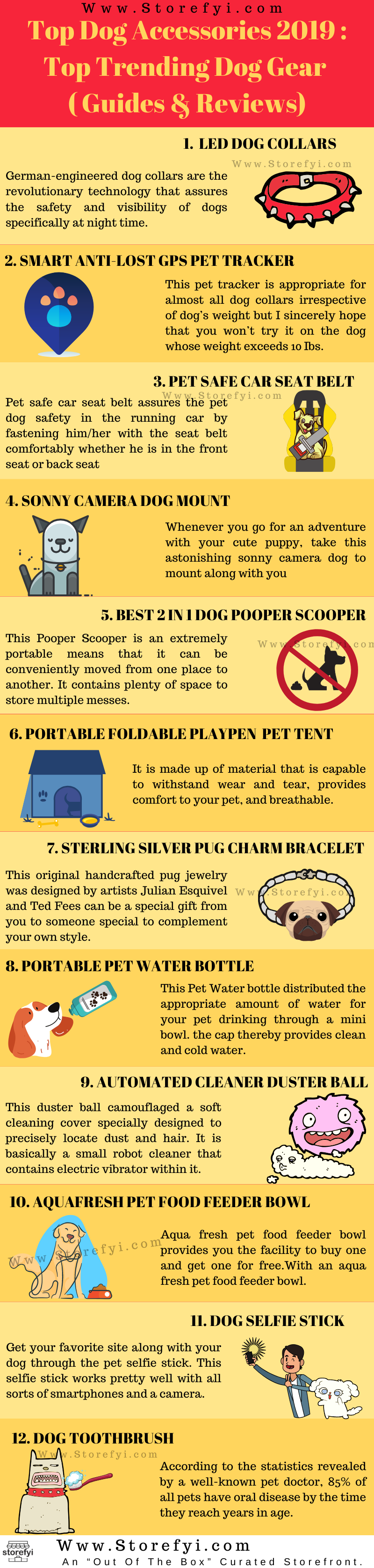 Dog gear infographics