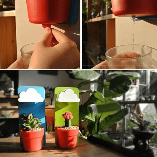 Storefyi® Automated Water Succulent Flower pot