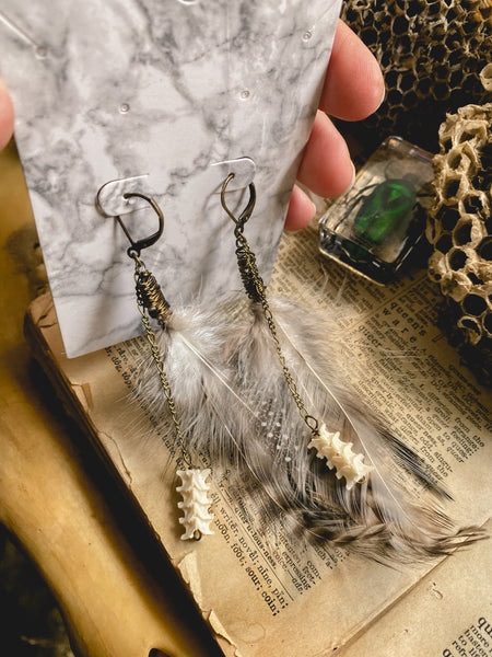 Feather & Ratlesnake Vertebrae Brass earrings