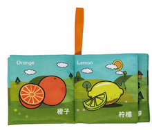 Load image into Gallery viewer, Baby Basics Crinkle & Squeaking Chinese Bilingual Baby Book Set (6 Books) - Inside Look