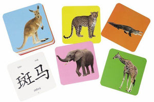 Mandarin Bilingual Zoo Animal Flash Cards