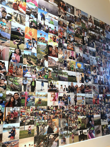 Lily & Lord picture wall