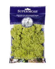 Load image into Gallery viewer, SuperMoss Preserved Reindeer Moss