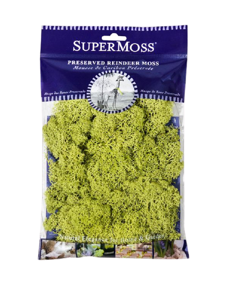 SuperMoss Preserved Reindeer Moss