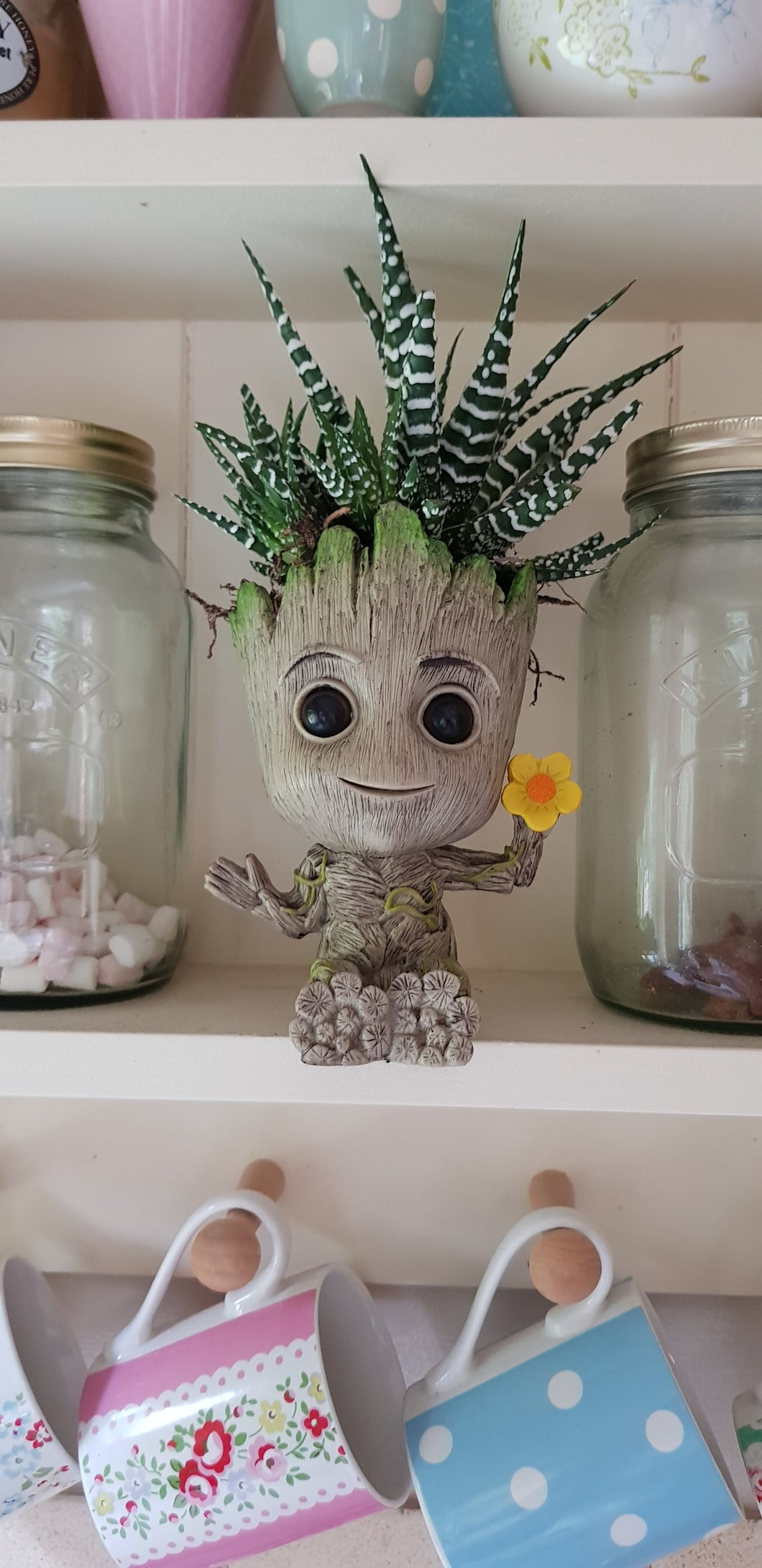 Baby Groot Plant Pot Holding Flower - with zebra Haworthia indoor plant      e