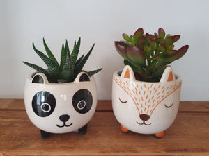 Sass and Belle Mini Woodland Fox Plant Pot