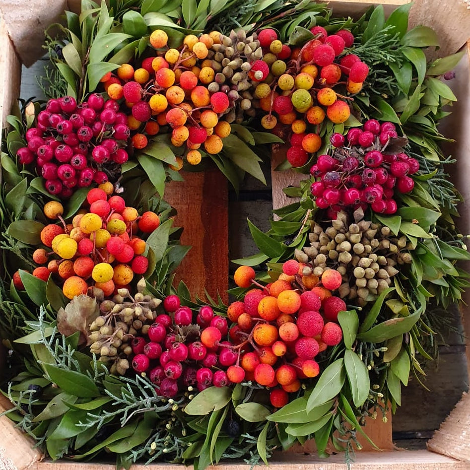 Fruit and Nut Christmas Live Wreath