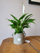 Load image into Gallery viewer, Grey indoor plant pot with heart