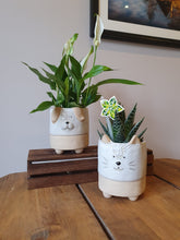 Load image into Gallery viewer, Dog Indoor plant pot 12cm