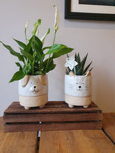 Load image into Gallery viewer, Cat indoor plant pot 12cm