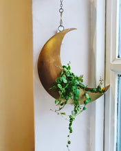 Load image into Gallery viewer, Sass and Belle Celestial Moon Hanging Planter/Plant Pot