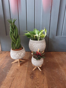 Marrakesh bowl indoor planter/plant pot on stand