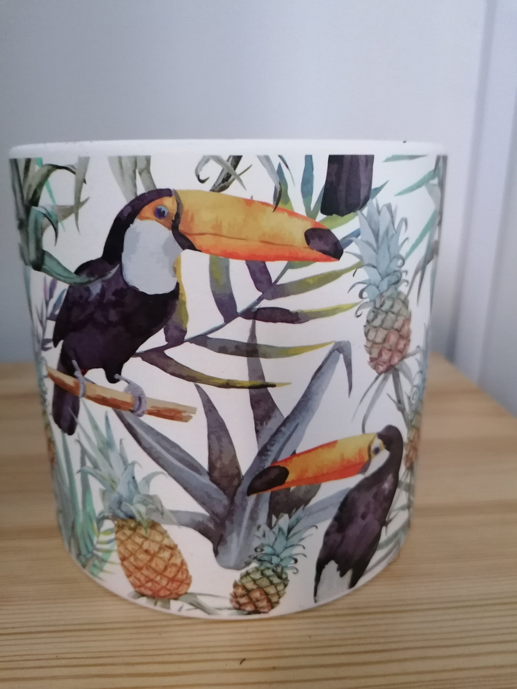Toucan and pineapple 15cm large indoor plant pot