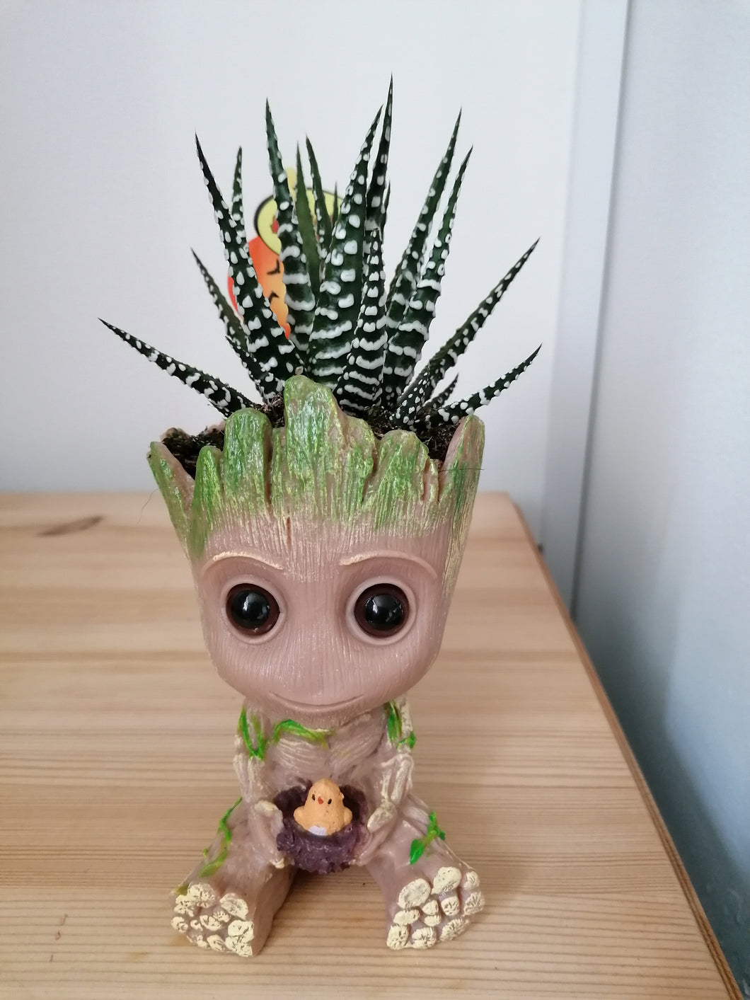 Baby Groot Plant Pot Holding Chick - With Zebra Haworthia