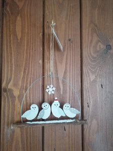 Shoeless Joe Barn Owls on Twig