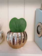Load image into Gallery viewer, Mini Glamour indoor plant pot