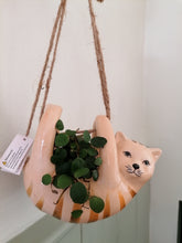 Load image into Gallery viewer, Sass and Belle Cat Hanging Planter/Indoor plant pot