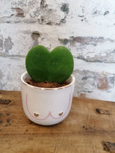 Load image into Gallery viewer, Sass and Belle Boobies Mini Planter/Plant Pot