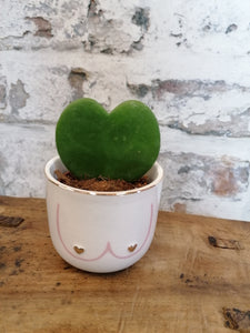 Sass and Belle Boobies Mini Planter/Plant Pot