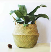 Load image into Gallery viewer, Medium Seagrass Belly Basket - Natural