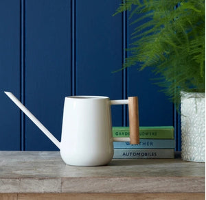 Burgon and Ball Indoor plant Watering Can - Stone