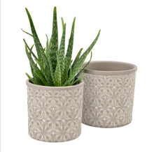 Load image into Gallery viewer, Burgon and Ball Porto glazed indoor plant pot - large grey