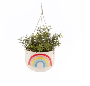 Sass and Belle chasing Rainbow 🌈  Hanging indoor plant pot