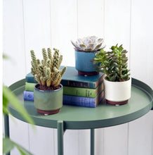 Load image into Gallery viewer, Burgon and Ball Blue Malibu Succulent indoor plant pot