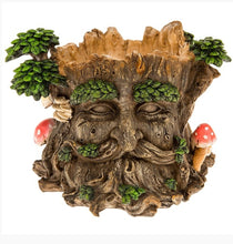 Load image into Gallery viewer, Garden Ent Tree Man Planter/plant pot