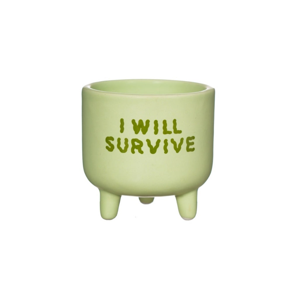 Sass and Belle I will survive mini planer/indoor plant pot