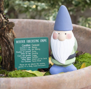 Mini Teracotta Weather Forecasting Gnome