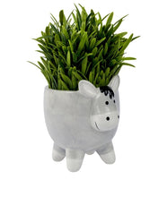Load image into Gallery viewer, Donkey ceramic indoor planter/plant pot
