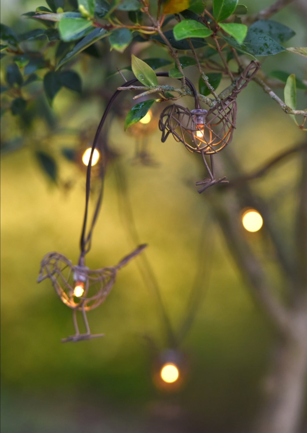 Lightstyle London Robin chain or indoor or outdoor lights