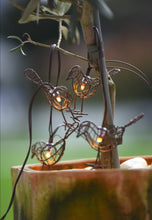 Load image into Gallery viewer, Lightstyle London Robin chain or indoor or outdoor lights