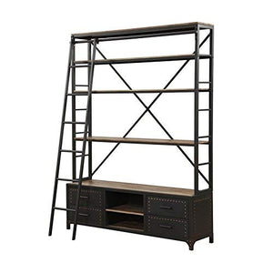 ACME Actaki Sandy Gray Bookshelf & Ladder
