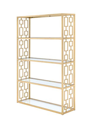 Acme Furniture 92465 Blanrio Etagere Bookshelf, Clear Glass/Gold