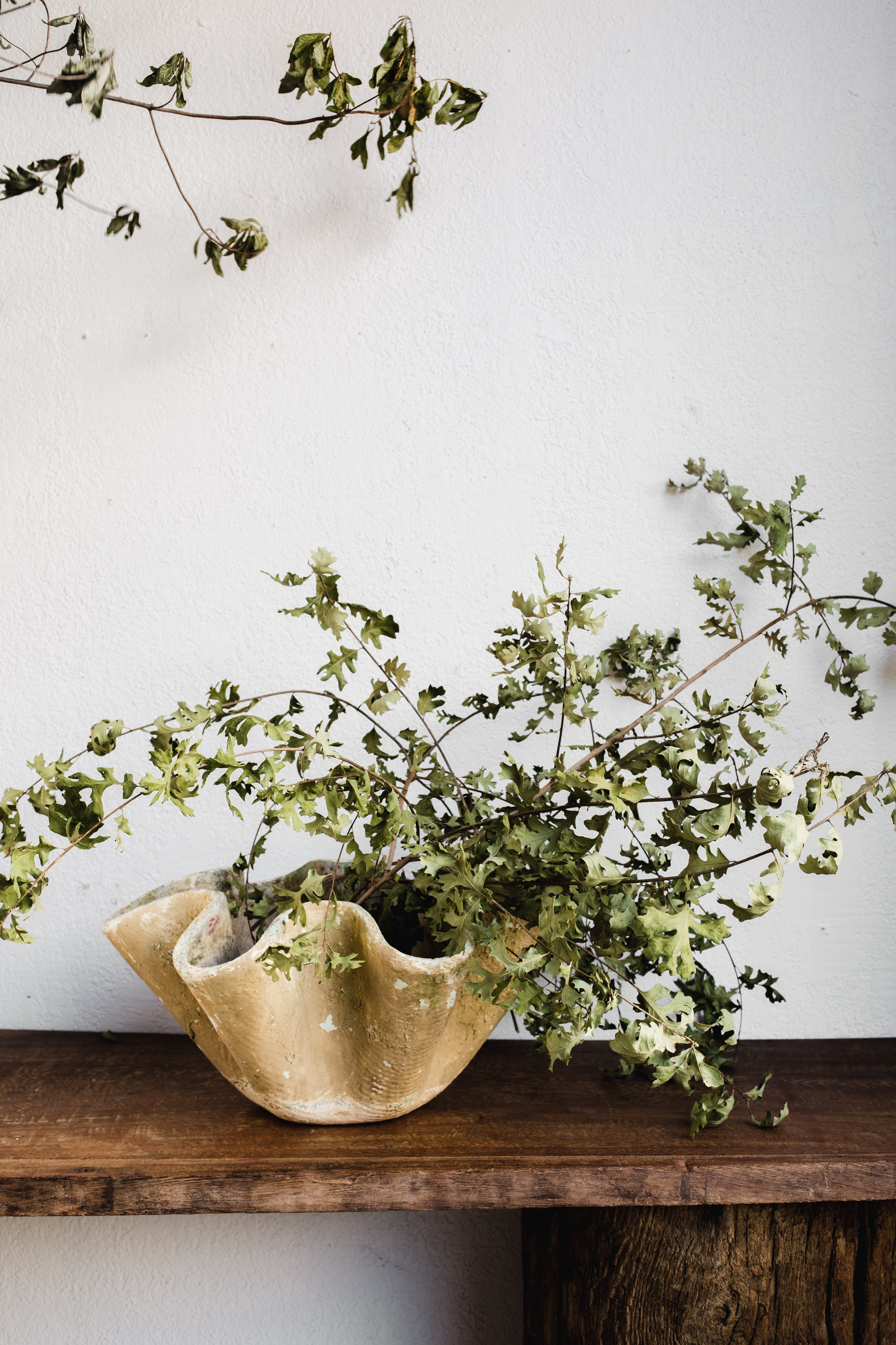 Grand Scalloped Edge Planter