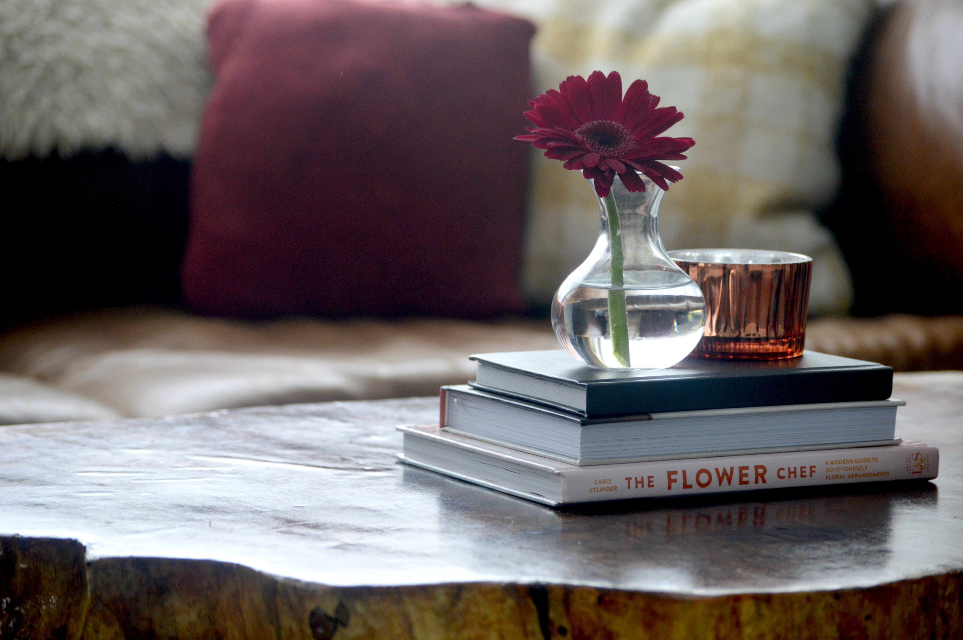 Styling Your Gerbera Daisies Bloomsybox
