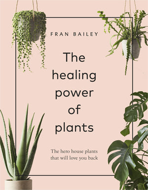 Healing Power Of Plants Book