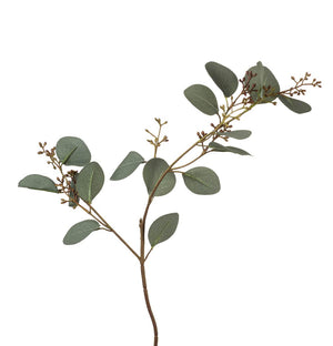 Eucalyptus Leaves Spray - Green BC2671