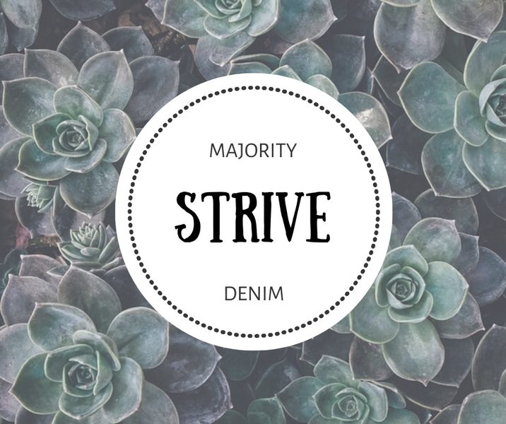 Word of the Week: Strive (How To Stay Motivated This Year)