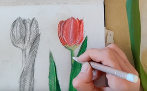 Let's draw Tulips! Dessinons des tulipes!-Atelier Toriko
