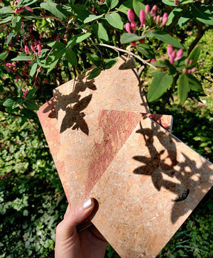 Sun catching cork notebooks-Notebooks-Atelier Toriko