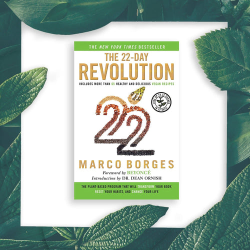 22 Day Revolution Book