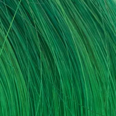Hair Healing Color Swatch Green Hover